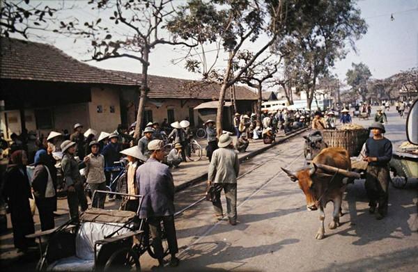 boi-hoi-khi-nhin-nhung-buc-anh-mau-ha-noi-nhung-nam-1970-10